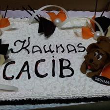 Proginis tortas 21