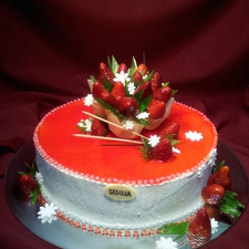 Proginis tortas 12