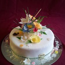 Proginis tortas 10