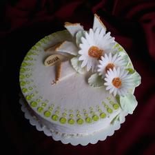 Proginis tortas 22