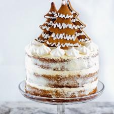 Proginis tortas Kalėdoms